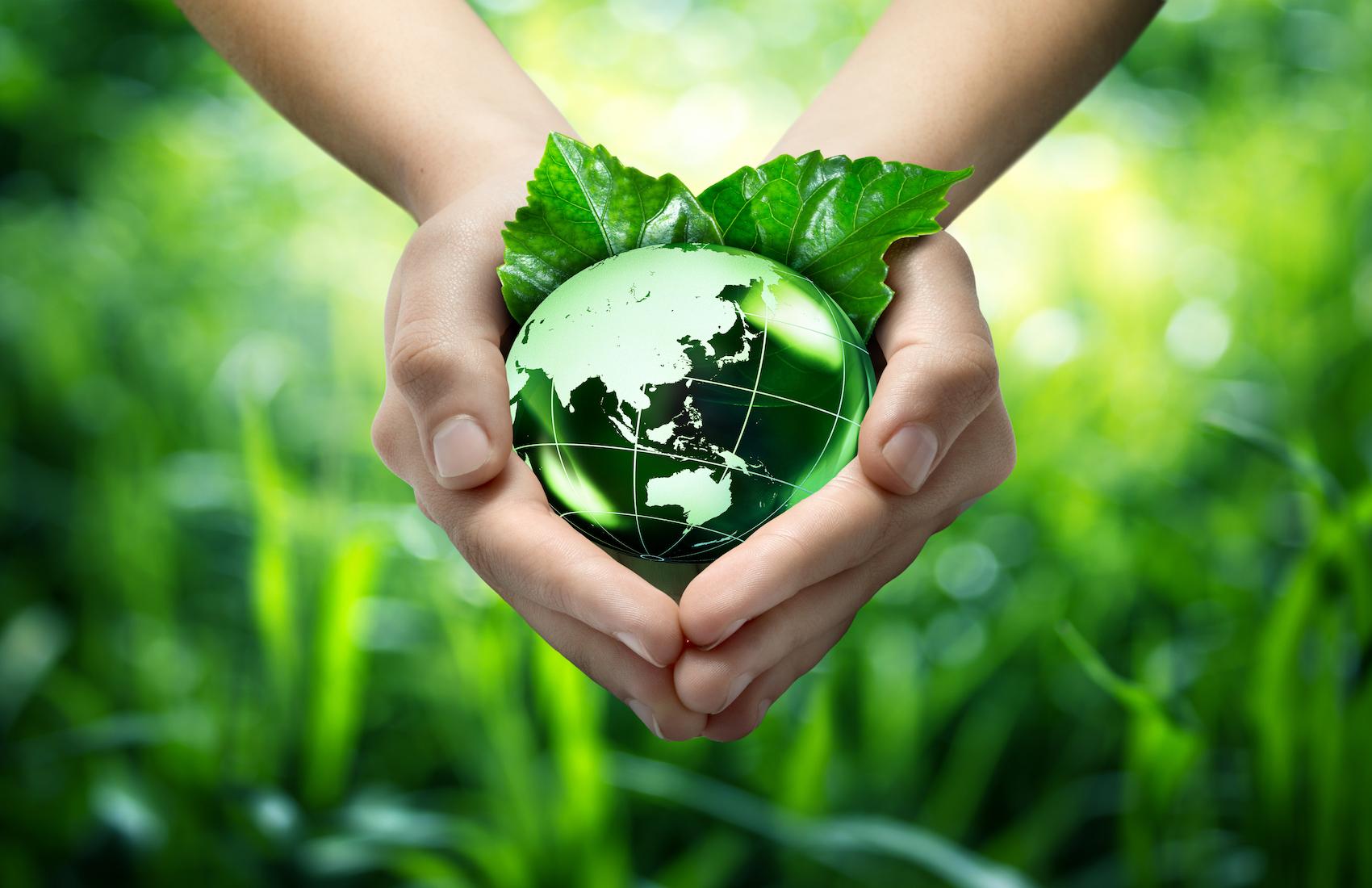 Realidad Virtual Y Sustentabilidad 4 | Virtual Reality And Sustainability 4